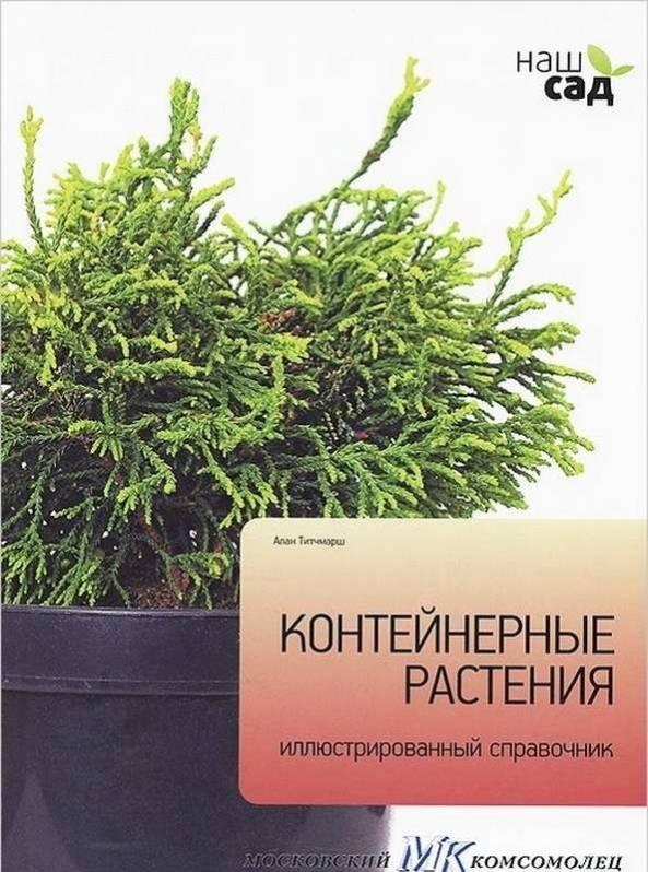 Наш сад Декоративные растения