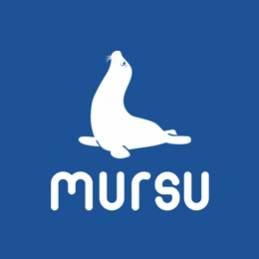 http://pokupkiru.ru/#!/215827-белый-Туфли-текстильные-Mursu-оптом-размеры-25-30/p/257221079